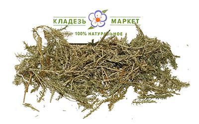 Баранец Плаун Huperzia Selago (Lycopodium Selago), Трава 50 г