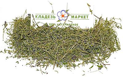 Чабрец, Тимьян Ползучий Thymus Serpyllum, Трава
