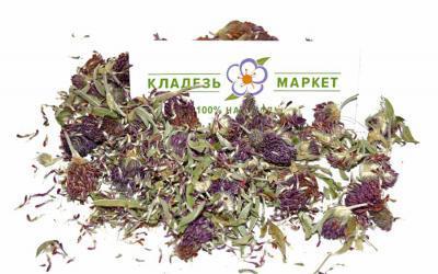 Клевер Луговой Trifolium Pratense, Цветки