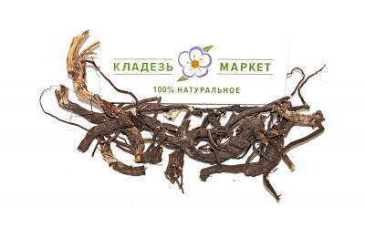 Кровохлебка Лекарственная Sanguisorba Officinalis, Корень