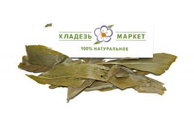 Ландыш Майский Convallaria Majalis, Листья