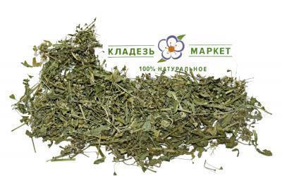 Пастушья Сумка Capsella Bursa-Pastoris, Трава
