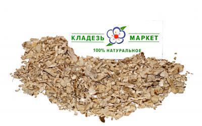 Подсолнечник Однолетний Helianthus Annuus, Корень