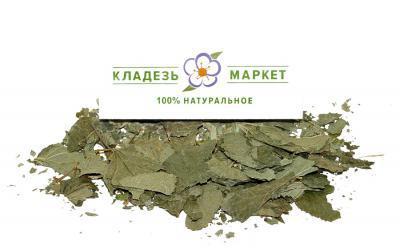 Смородина Черная Ribes Nigrum, Лист