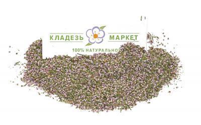 Вереск Обыкновенный Calluna Vulgaris, Цветки