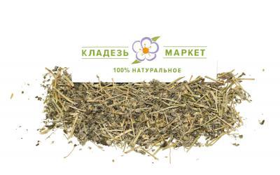 Якорцы стелющиеся Tribulis terresteris, трава 50 г