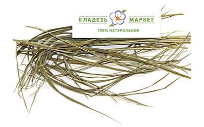 Зубровка Душистая Hierochloe Odorata, Трава